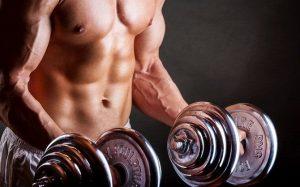 Muscular growth